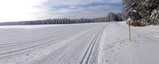 header_winter.spur_4.jpg