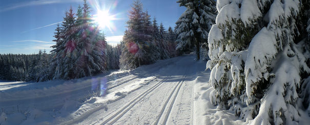 header_winter.spur_5.jpg